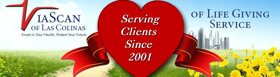 ViaScan - Serving Clients Since 2001